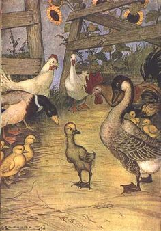 'The Ugly Duckling' - illustrator A.H. Watson <> A childhood favorite! (children's art, classics, fairytales, nursery rhymes)