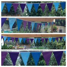 Purples & blues :)