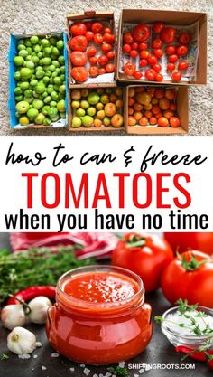 Develop A The Moment Upon A Dream Fairy Tale Birthday Bash Short On Time And Too Busy To Process Tomatoes? Here's My Method For How To Can And Freeze Tomatoes When You Have No Time. Custom made Canning Without All The Stress Clean Eating Recipes, Easy Healthy Recipes, Raw Food Recipes, Delicious Recipes, Healthy Snacks, Canning Vegetables, Canning Tomatoes, Freezing Vegetables, Farmers Market Recipes