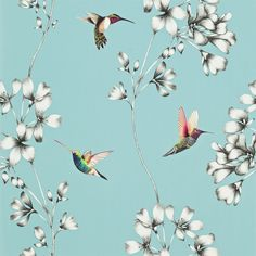 wallpaper design of etched trailing flowers with vivid coloured amazilia hummingbirds. Wallpaper Direct, Pattern Wallpaper, Iphone Wallpaper, Wallpaper Online, Diamond Wallpaper, Feature Wallpaper, Wallpaper Backgrounds, Harlequin Wallpaper, Black Wallpaper