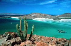 Playas de La Paz en Baja California Sur - http://revista.pricetravel.com.mx/playas/2015/06/30/playas-de-la-paz-baja-california-sur/