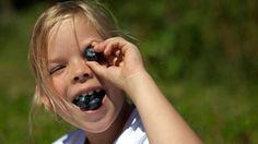 Jest pyszna i słodka, cała wchodzi do buzi i oka... Wow! #berrygood #borówkowo #berries #berry #wspólnie #zabawka #borówka #radosczzycia #wiemcojem #play #dobryczas #borówkawoku #natura #niezływidok #przyjemność #dziecko