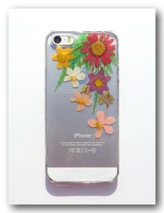 Pressed flower phone case, Real flowers case for iPhone 5/5S  (71)
