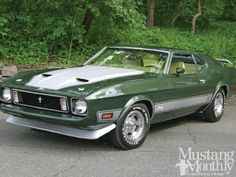15 best 1973 ford mustangs images ford mustangs 1973 mustang rh pinterest com