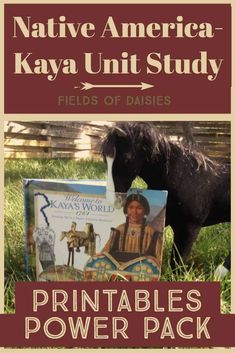 FREE 50 Pages of Native America Printable Activities ! Make history FUN ! The perfect companion for FREE Native America Unit Study *Planning Sheets for each week *Teaching Tips for this Unit *Field Tr World History Lessons, American History Lessons, Study History, History Activities, Teaching History, History Education, Teaching Tips, Social Studies Notebook, Daisy Field