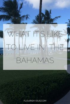 The Bahamas is on so many peoples bucket lists. And Guesss what? I actually lived there for a year. This is the story of my expat life in the Bahamas and how I made the Bahamas home. There's more to do there than just the Atlantis,beach cottages and the swimming pigs.