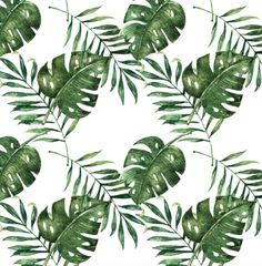 Tropical wallpaper from RockyMountainDecals is made from self adhesive wall vinyl. The palm leaf wallpaper is easy to hang (peel and stick) and easy to take off. It brings a little summer inside!
