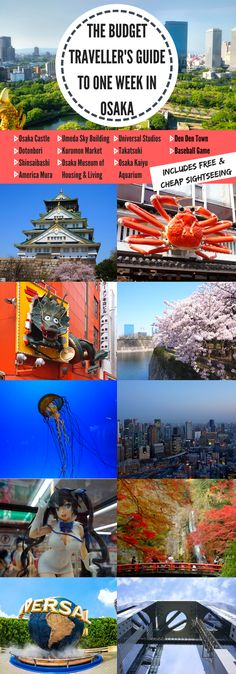 The Budget Traveller's Guide to One Week in Osaka #osaka #japan #travelguide #budgettravel