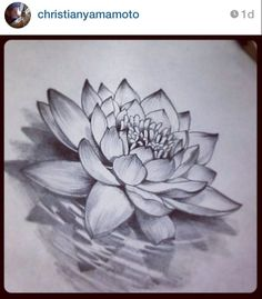 lotus flower tattoo sketch