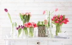 tulips on the table via 79 Ideas