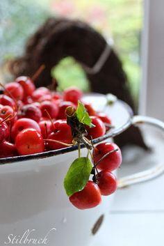 November wreath of mallus, Stilbruch: DIY Sweet Cherry Pie, Kitchen Kapers, Farm Photography, Cherry Recipes, Sweet Cherries, Cherry Tree, Fruit Salad, Summer Time, Berries