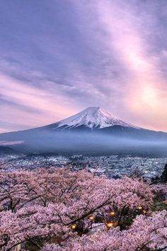 Another Japan Photo is part of Mount fuji - 505 points Monte Fuji Japon, Beautiful World, Beautiful Places, Fuji Mountain, Cherry Blossom Japan, Cherry Blossoms, Mont Fuji, Japan Photo, Nature Pictures