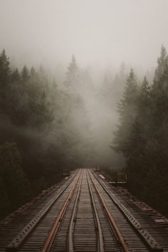 Train tracks on a foggy morning Trains, Fuerza Natural, All Nature, Train Tracks, Pics Art, Belle Photo, Pretty Pictures, Beautiful World, The Great Outdoors