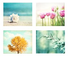 Four Seasons Photography Set - 4 Nature Photographs - winter spring - summer fall autumn - 4 seasons art prints - aqua blue mint green pink by CarolynCochrane on Etsy https://www.etsy.com/listing/106042705/four-seasons-photography-set-4-nature