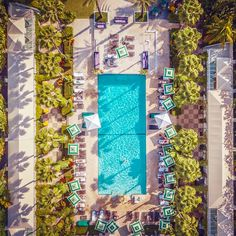 South Beach is calling! 🌴 And so is a daycation of fun in the sun at the Kimpton Surfcomber Hotel! Day Passes start at $35 and include a palm-tree-lined pool, delicious food, and beach access! #ResortPass #SummerVacation #Vacation #LuxuryPools #Poolday #SouthBeachMiami #Florida #ResortPool Miami Pool, South Beach Miami, Florida Hotels, Hotels And Resorts, Luxury Pools, Pool Days, Palm Trees, Delicious Food, Sun