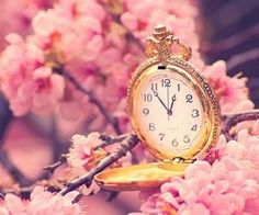 #pocketwatch #gold #pink #fantastical #pretty #cherryblossoms