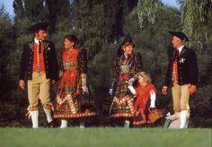 Folk Costumes of Germany. Unterfranken This costume is from Ochsenfurt in Lower Franconia.