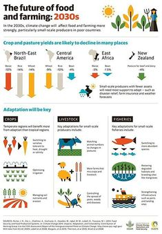 <a href=http://ccafs.cgiar.org/blog/climate-change-and-farming-what-you-need-know-about-ipcc-report#.VGO0V_nF81I>The Future of Food and Farming: 2030</a> – a graphic overview of the impact of climate change on agriculture and food security. Adaptation of our crops and farming methods will be key to a sustainable future. Source: Consultative Group on International Agricultural Research (CGIAR)