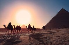 Free Image on Pixabay - Pyramids, Cairo, Egypt, Desert Best Holiday Destinations, Travel Destinations, Travel Deals, Travel Guide, Dubai, Pyramids Of Giza, Egypt Travel, Greece Travel, Grande Hotel
