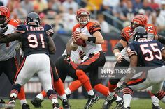 3c9034807 Cincinnati Bengals QB Carson Palmer in action vs Chicago Bears