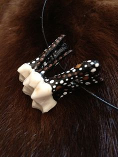 Swedish Moose tooth / taxidermy by SkullsAndBonesSweden on Etsy