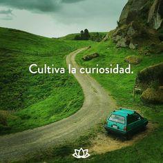 Cultiva la curiosidad.