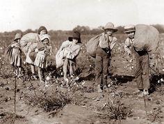 Cotton Pickers, 1910s