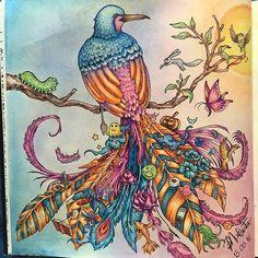 Instagram media colorindolivrostop - #sexta13linda @Regrann from @renatodonizeti -  Boa tarde! A sexta feira é 13, mas convenhamos que somos pessoas de sorte! Temos a natureza e as cores! Colorindo #animorphia #colorindolivrostop #color #florestaencantada2 #jardimsecreto #kerbyrosanes #bird #phoenix #johannabasford #inspiracaojardimsecreto #love #adultcoloringbook #colouring #florestaencantadainspire #jardimsecretoinspire #jardimsecretomg #doodles #doodleoftheday #doodlesofinstagram #Regrann