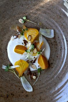 Golden Beet Salad with Fennel, Radish Shoots, Dates, Almonds & Gorgonzola Cream (For a salad dressing could try a sweet variation with honey) Beet Salad, Healthy Recipes, Cooking Recipes, Drink Recipes, Food Presentation, Food Plating, Food Design, Soup And Salad, Food For Thought