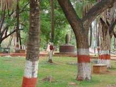 Stone Sculptures at Indira Park Hyderabad
