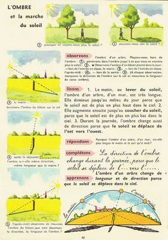 c ♦️ school : ombre et soleil Science Projects For Kids, Science For Kids, Science Nature, How To Speak French, Learn French, Montessori Science, Study French, Living In England, Teaching Schools