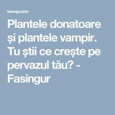 Plantele donatoare și plantele vampir. Tu știi ce crește pe pervazul tău? - Fasingur Plant