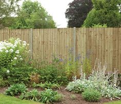 Secure Online Purchasing Of Many Garden Products Including The Forest  Featheredge Contractor Square Top Fence Panel 183 X Free Advice OPEN 7 DAYS  A WEEK!