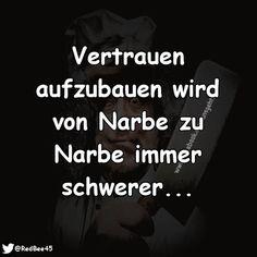 gurke #laughing #funny #lustig #funnypics #schwarzerhumor #chats #funnypictures #lachflash #lachen #jokes #lol
