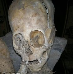 A mummified elongated skull found in Peru could finally prove the existence of aliens. The strangely shaped head - almost as big as its 50cm (20in) body - has baffled anthropologists. It was one of two sets of remains found in the city of Andahuaylillas in the southern province of Quispicanchi. Spanish and Russian scientists who have examined the remains claim they are actually those of an alien.