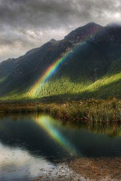 Reflections: Rainbows