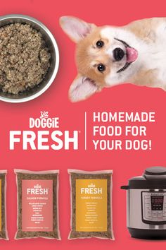 The Fresh Food Meal Kit for Your Dog, Made in Minutes with your Instant Pot Dog Snacks, Dog Treats, Food Packaging Design, Ads Creative, Food Website, Homemade Dog Food, Dog Feeding, Pet Food, Corgis