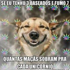 Cão Chapado | Gerador Memes