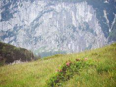 Alpy, Austria Half Dome, Trips, Mountains, Nature, Travel, Viajes, Traveling, Nature Illustration, Off Grid