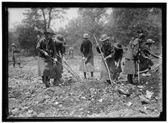 Girl Scouts gardening during WWI