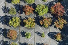 Image result for Parking Lot Planters, East St. Louis