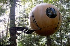 This is the Free Spirit Sphere. It is one of the most expensive treehouses in the world and costs $44,700 and to enter one must be 16 years old and up.