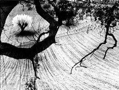 """Poeta y pintor, Giacomelli utiliza la cámara """"como un lienzo"""" sobre el que se puede hacer todo aquello que se quiera. Bastante alejado de los protocolos de la estética fotográfica, sus imágenes destilan los signos característicos de lo borroso, del movimiento: son deliberadamente imprecisas. Para ello, interviene sobre las fotografías utilizando técnicas de quemado y enmascarado que dotan a su obra de un léxico absolutamente personal y poderosamente expresionista."""