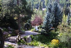 betty ford alpine gardens. Cars Review. Best American Auto & Cars Review