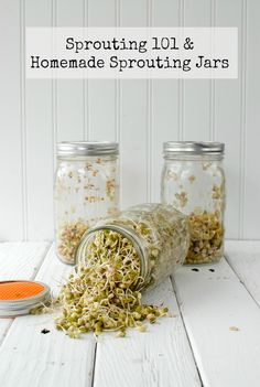 Boulder Locavore Reader Favorites:  Top 10 Recipes of 2013  Especialy the sprouting jars recipies!!!!!
