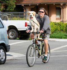Doggy on a bike.  Awwwwwww.
