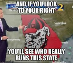 Us dawgs run this state! That is the flat out truth Georgia Bulldogs Football, Falcons Football, College Football Teams, Football Baby, Football Season, Georgia Girls, Georgia Vs, Football Quotes, Cheer Dance