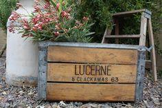 Vintage crates to rent