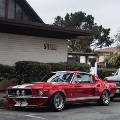 Ford Gt, Ford Mustang Shelby Gt, Shelby Car, Mustang Fastback, Mustang Cars, Shelby Gt500, Mustang Rocket, Classic Mustang, Ford Classic Cars