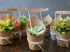 Disséminées ici et là, ces plantes succulentes pourront endosser plusieurs fonctions: celle d'un cadeau ou celle d'un marque-place d'esprit végétal.